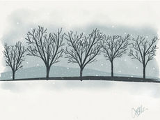 Cheryl Childers drew trees that were dark and bare contrasted by the stark white of untouched snow. The design was chosen the winner for the Festival of Trees wine label.